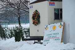 Christmas Tree Church Fundraiser